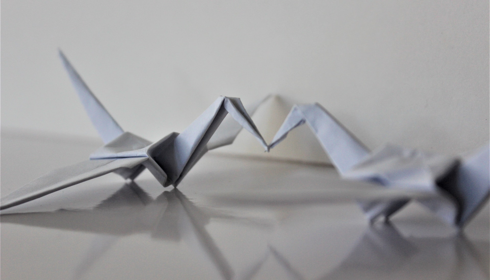 two connected origami birds