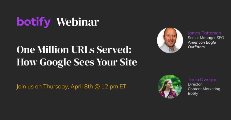 One Million URLs Served: How Google Sees Your Site